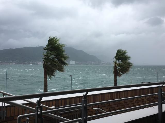 台風 ハリケーン